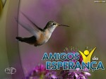AmigosDaEsperanca32
