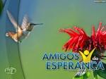 AmigosDaEsperanca34