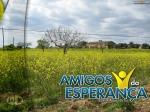 AmigosDaEsperanca60